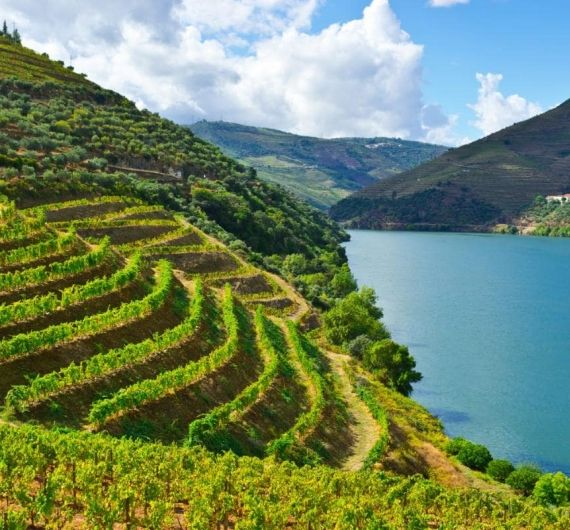 Puur natuur in de Douro vallei tijdens je Portugal fly and drive
